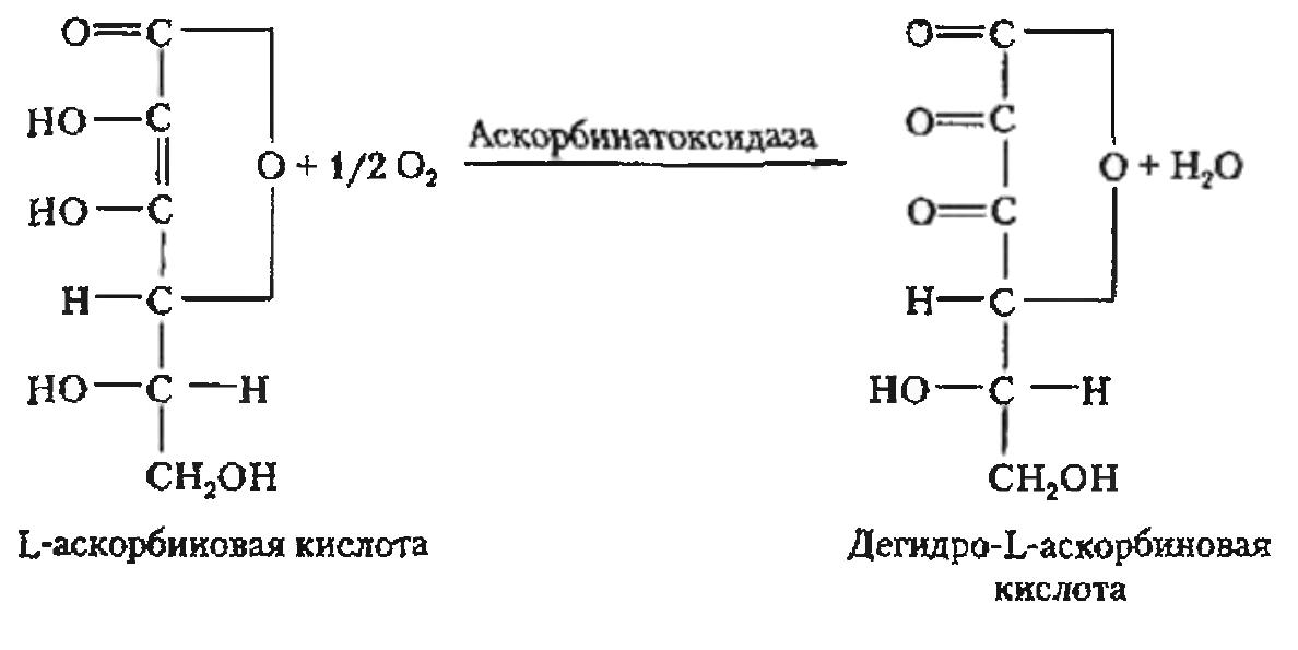 Улучшители хлеба окислительного действия аскорбиновая кислота